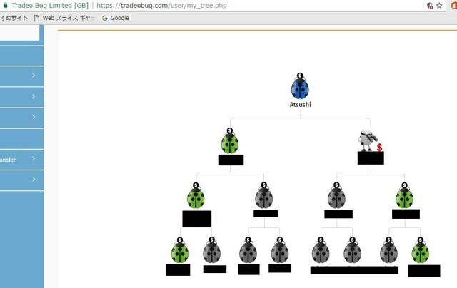 tradeobug tree.jpg